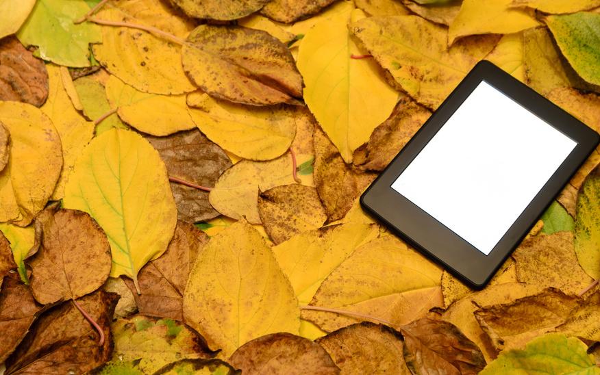 ebook reader auf Laub_selbstgelesen